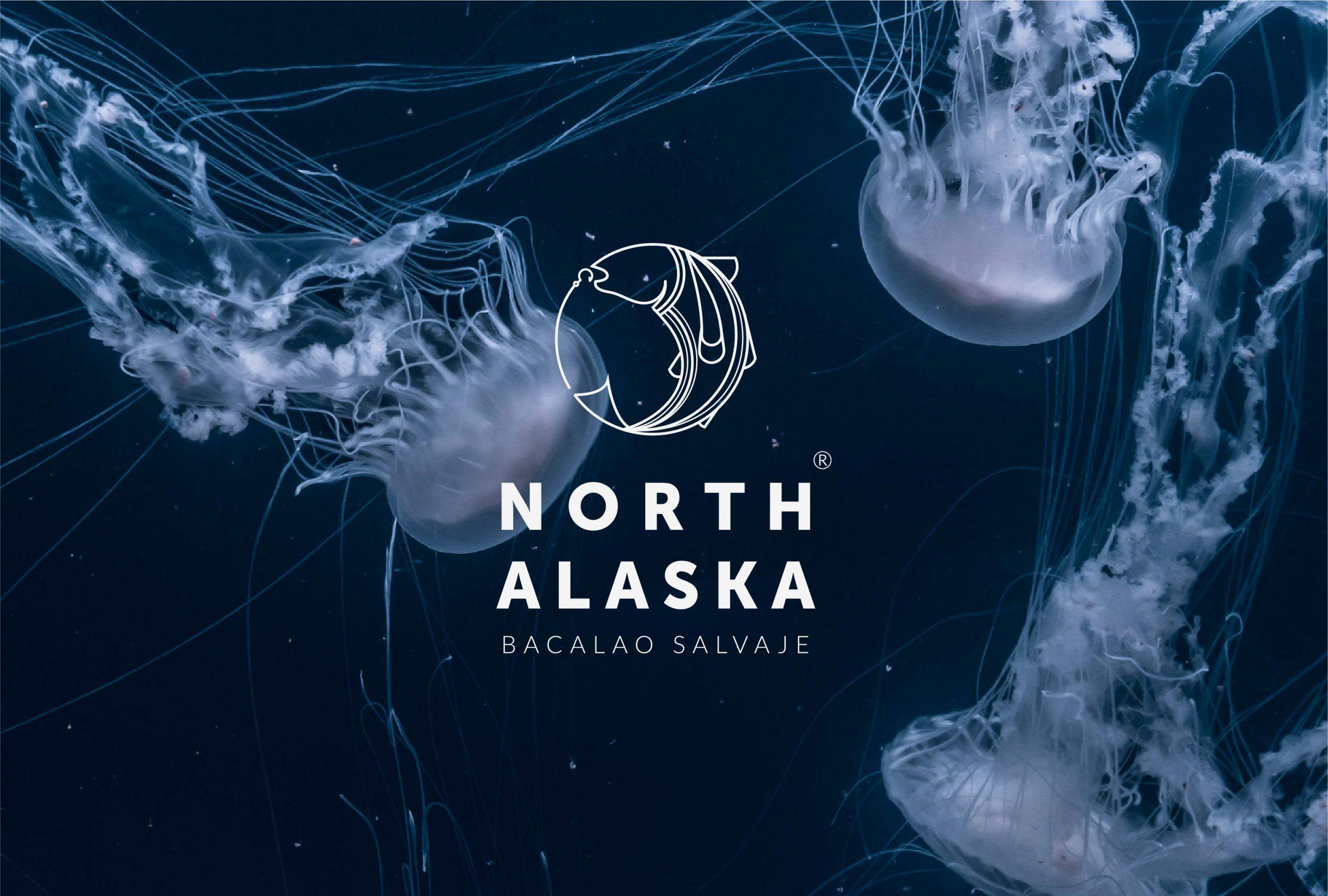 diseño imagen corporativa north alaska