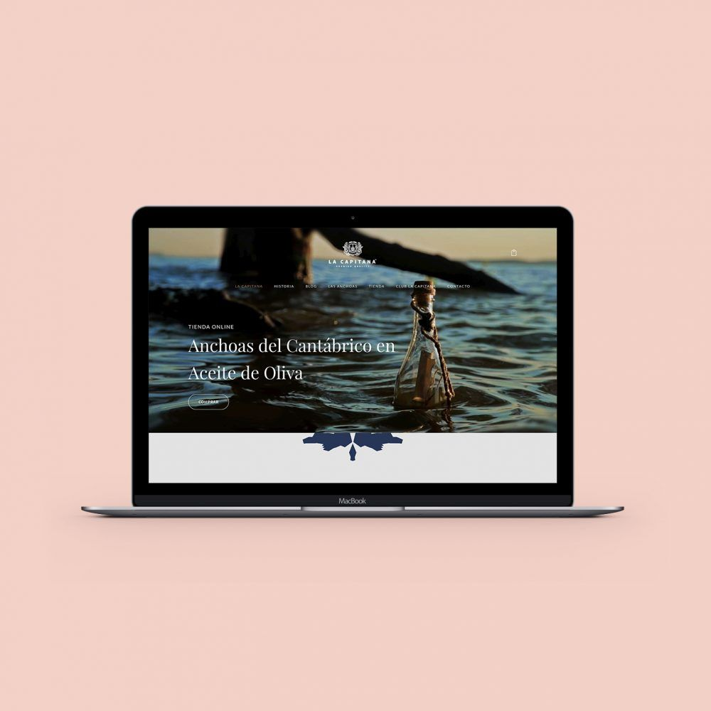 diseño tienda online la capitana